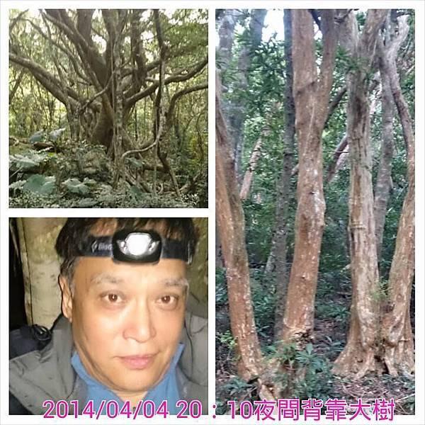 里龍山露營3