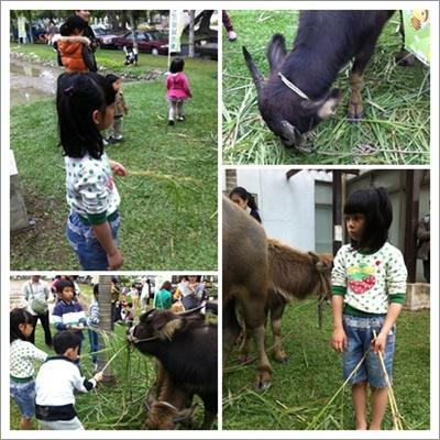 秧101秧10