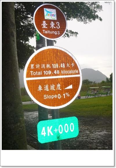 台東7P1020053