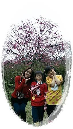 陽明山5IMG_5627