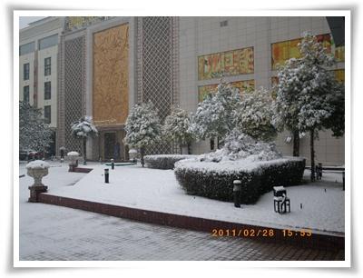 雪21IMGP2089.JPG