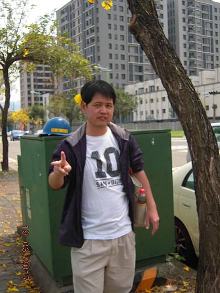 黃金風鈴木 (36).JPG