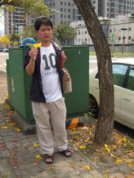 黃金風鈴木 (35).JPG