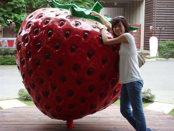 大湖的名產當然就是草莓啦