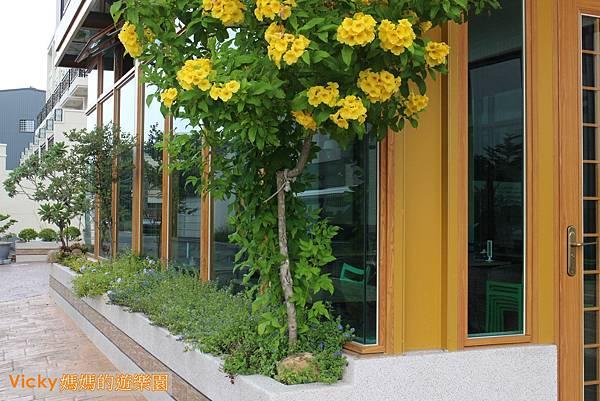 夏蜜綠蔬食咖啡館001.jpg