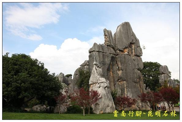 昆明石林 (40).jpg