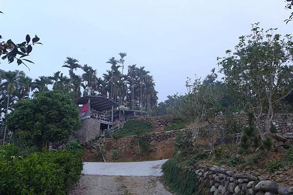 水鄉山岳 (98).jpg