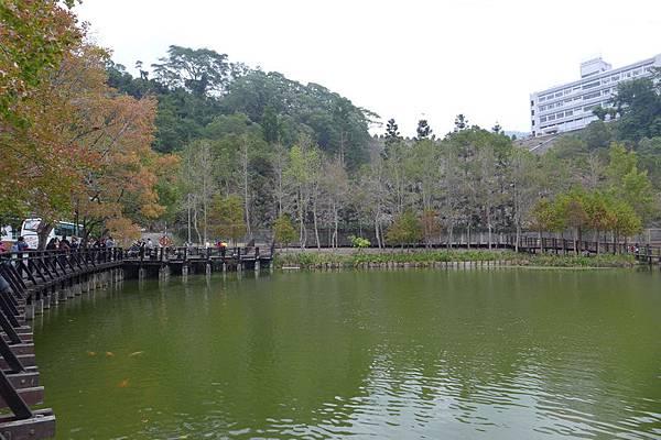 水鄉山岳 (136).jpg