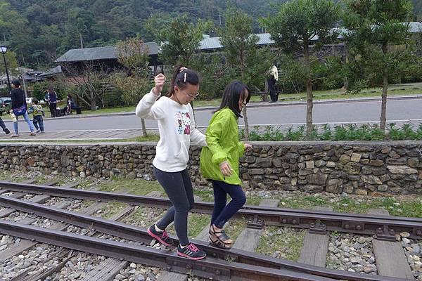 水鄉山岳 (141).jpg
