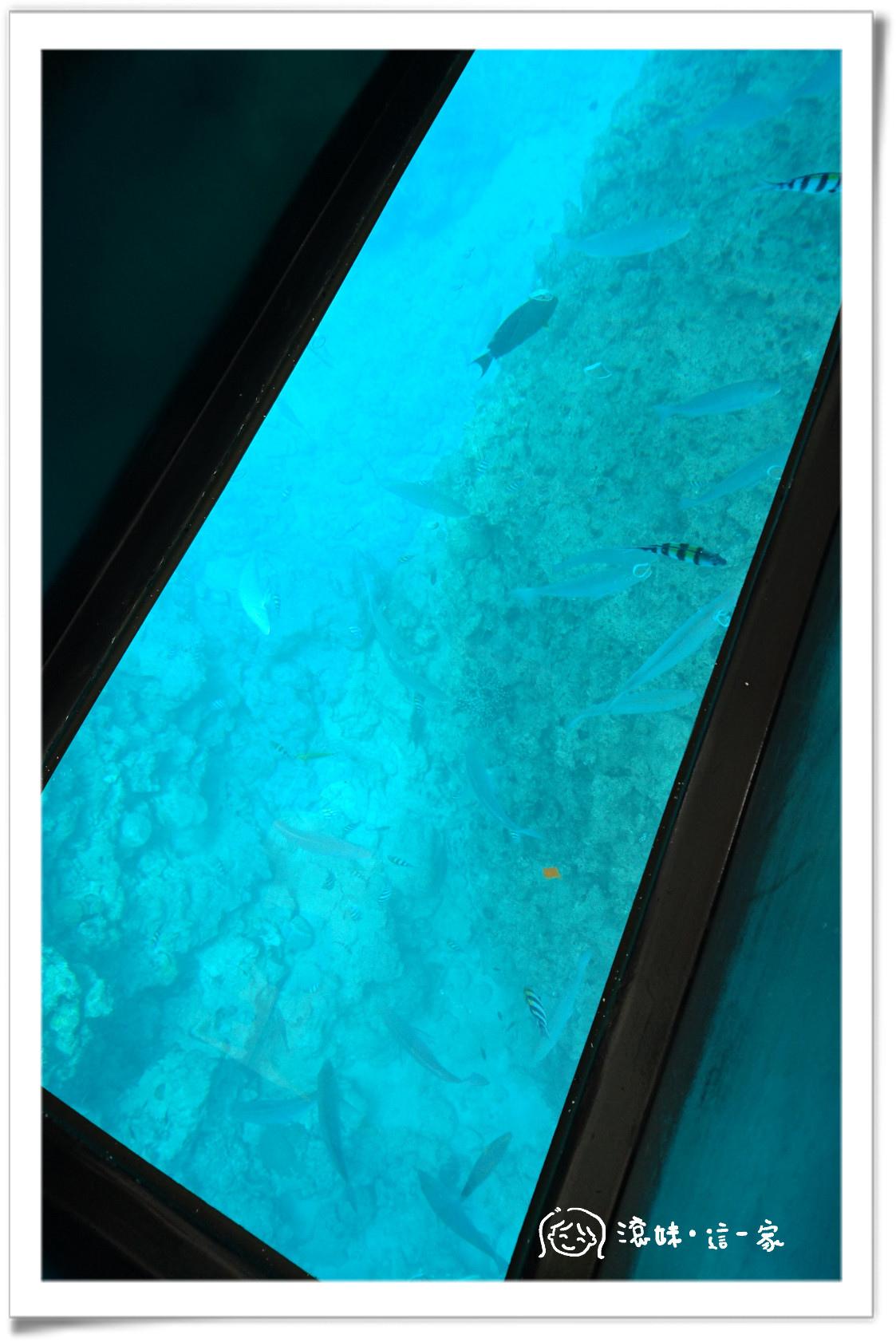 玻璃船001.jpg