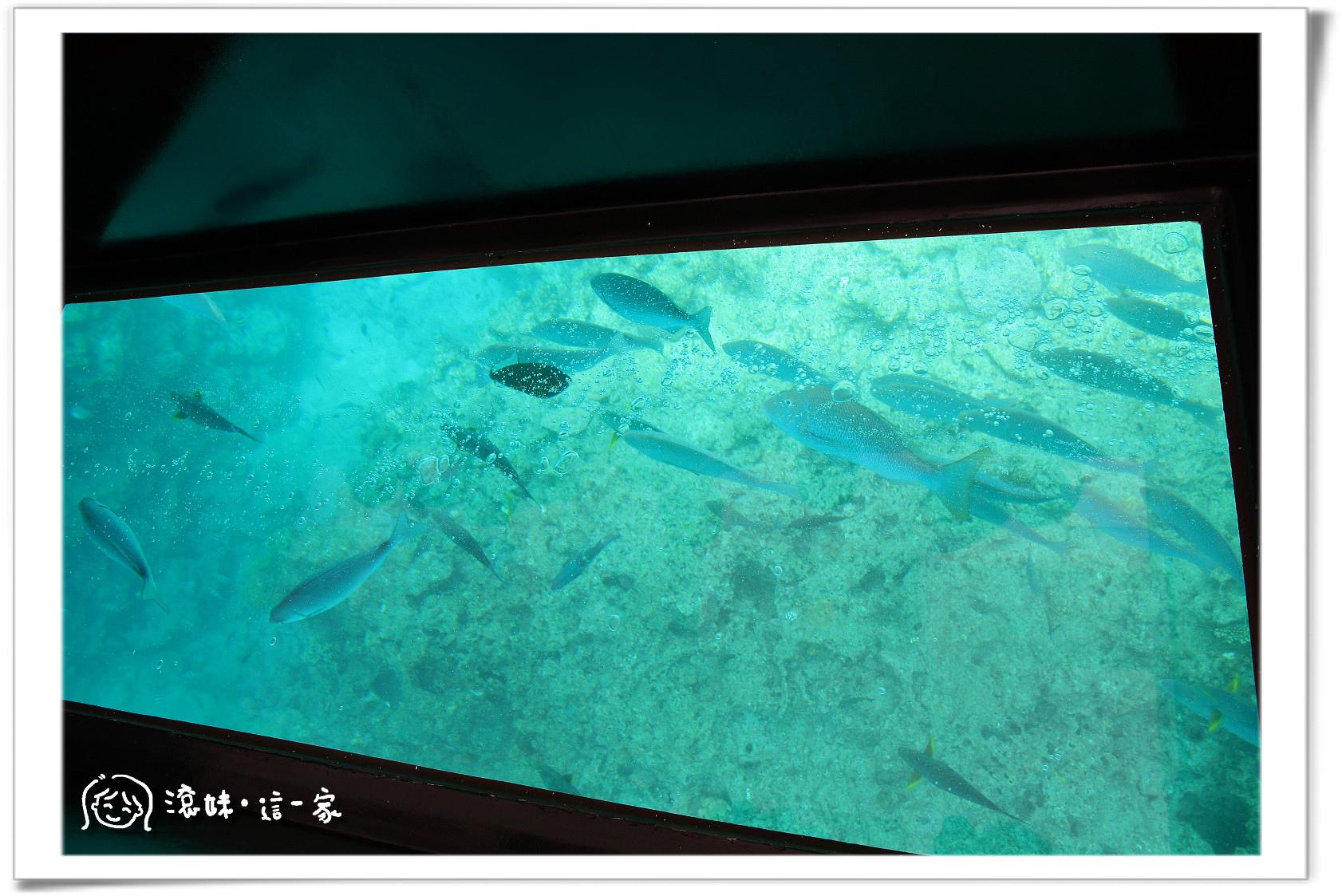 玻璃船004.jpg