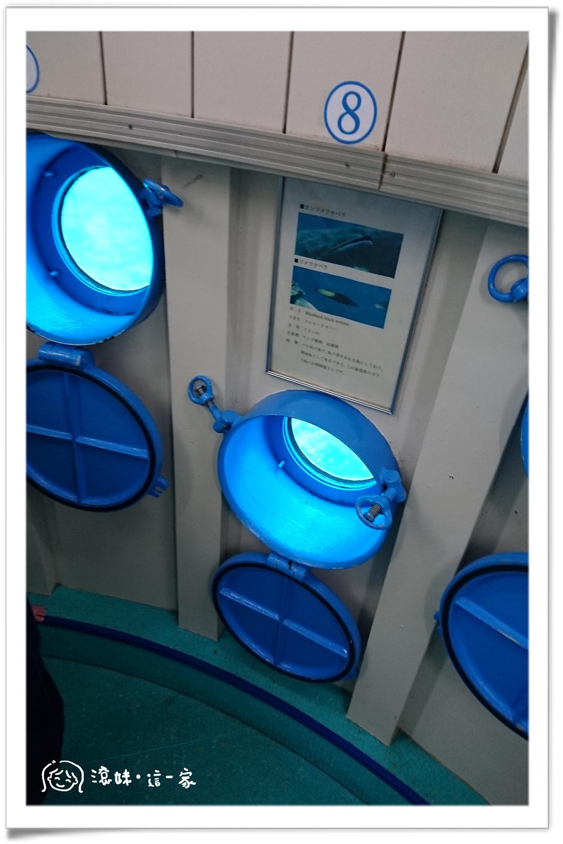 玻璃船018.jpg