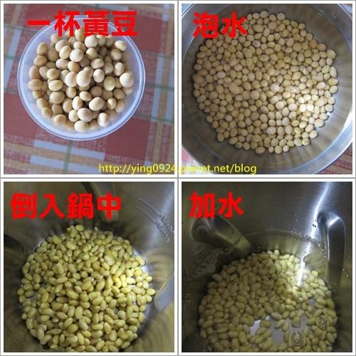 黃豆.jpg