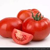 蕃茄-1-460X380