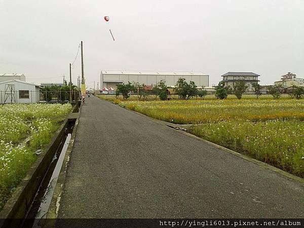 201111201231.jpg