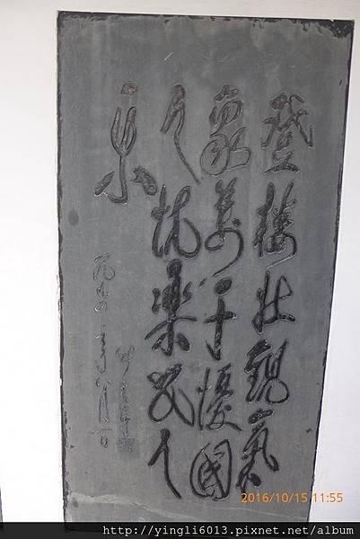 P1350495.JPG