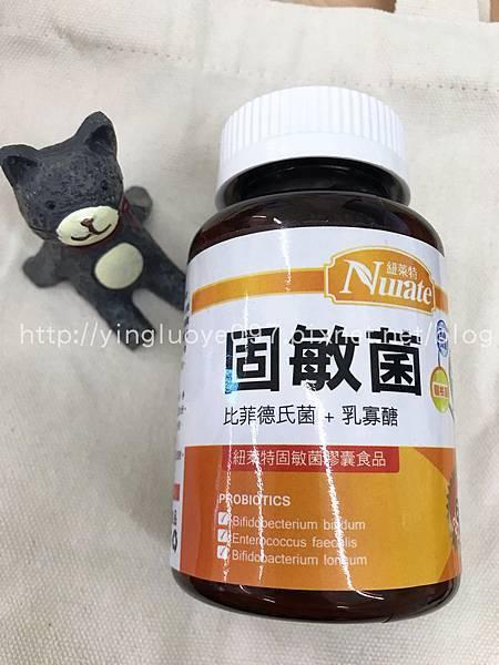 腸絞痛益生菌固敏菌