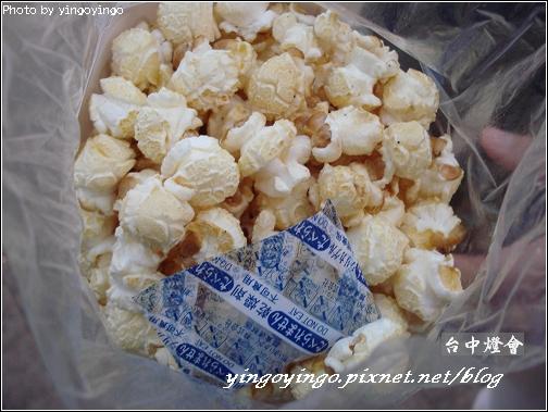 台中燈會980214_01148.jpg