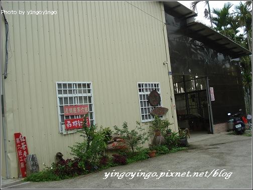 南投魚池_森林紅茶_980425_02586.jpg