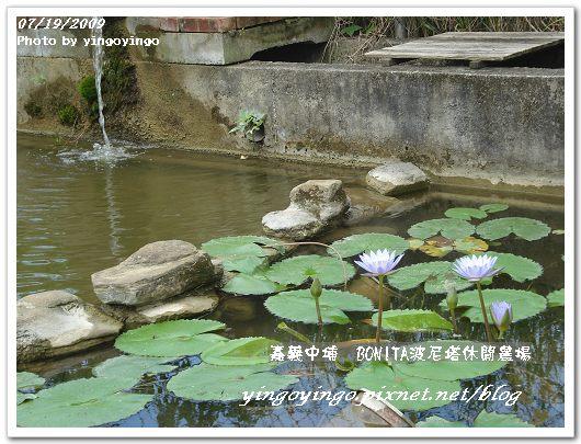 嘉義中埔_波尼塔休閒農場_09590.jpg