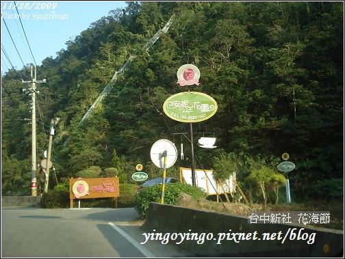 台中新社_花海節981128_00680.jpg
