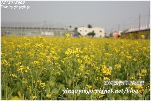 嘉義市_2009花海節_05026.jpg