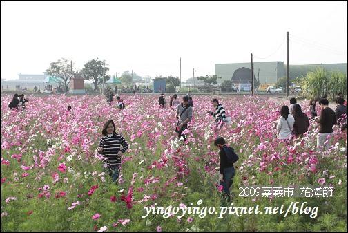 嘉義市_2009花海節_05028.jpg