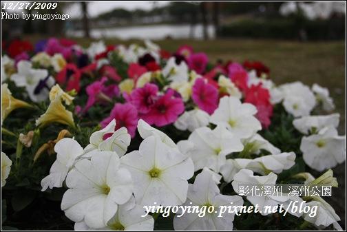彰化溪州_溪州公園981227_0696.jpg