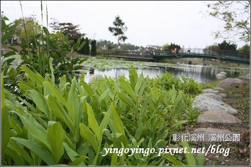 彰化溪州_溪州公園981227_0711.jpg