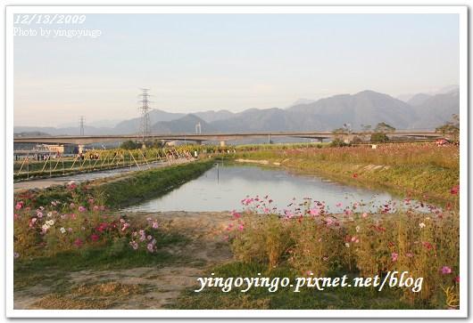 南投埔里_花卉中心981213_0472.jpg