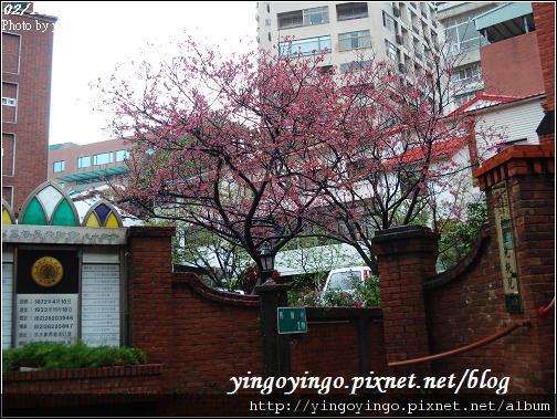 台北淡水_990219_01744.jpg