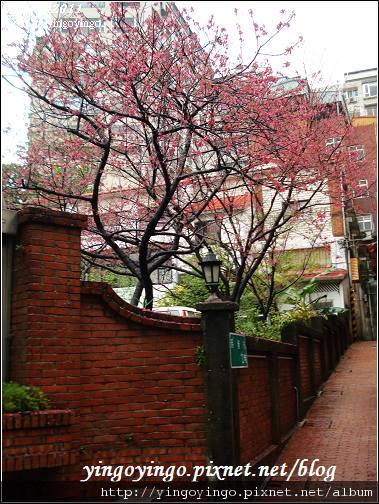 台北淡水_990219_01746.jpg