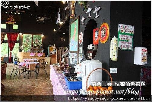 苗栗三義_悅貓菊色森林9903_I5319.jpg
