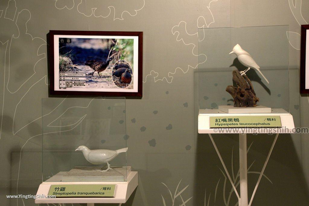 M_M_20180212_屏東恆春龍鑾潭自然中心/高倍率望遠鏡鳥類觀察/國家級重要濕地043_3A5A0637.jpg