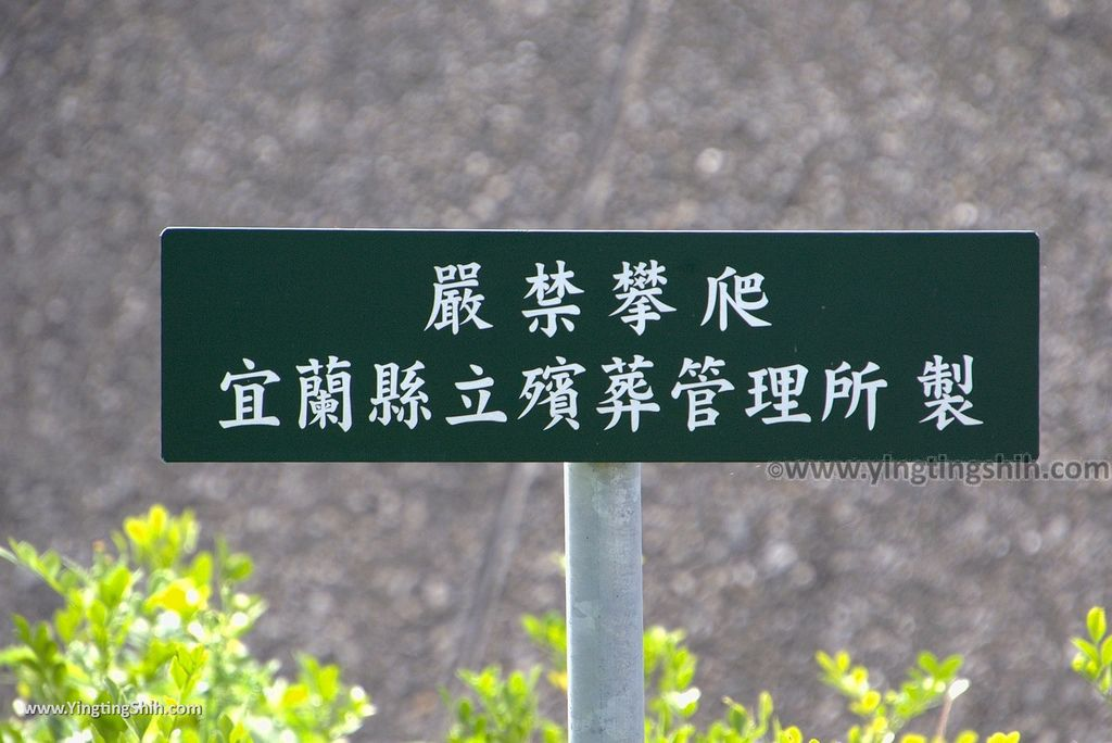 M_M_20180609_櫻花陵園119_櫻花橋/渭水之丘_3A5A4723.jpg