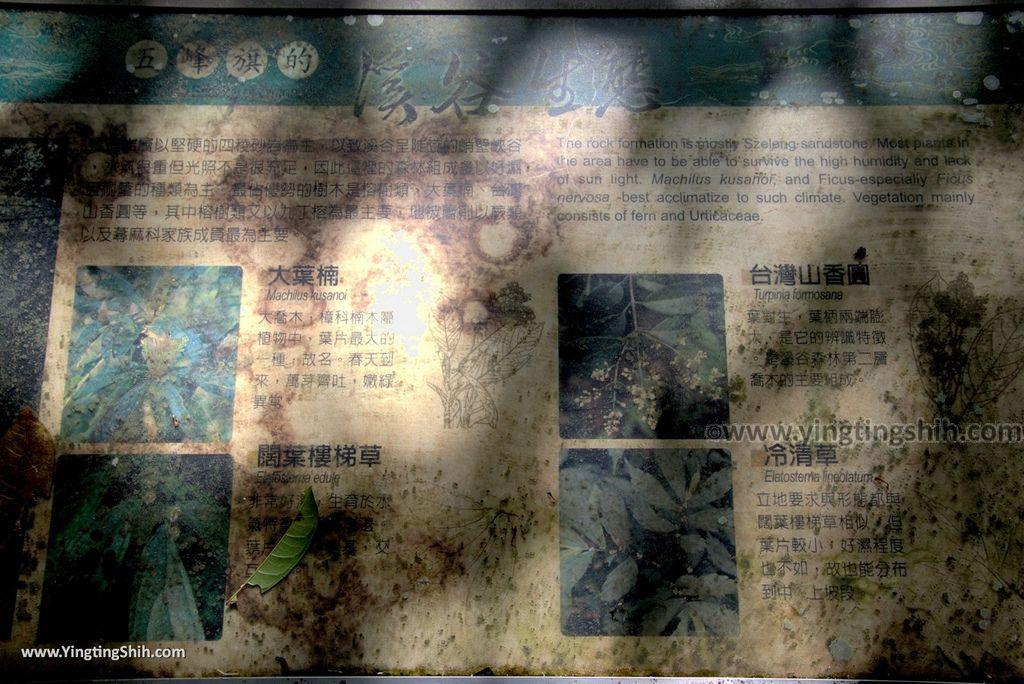M_M_20180609_宜蘭礁溪五峰旗風景特定區/聖母朝聖地/第一、二、三層瀑布096_3A5A6320.jpg