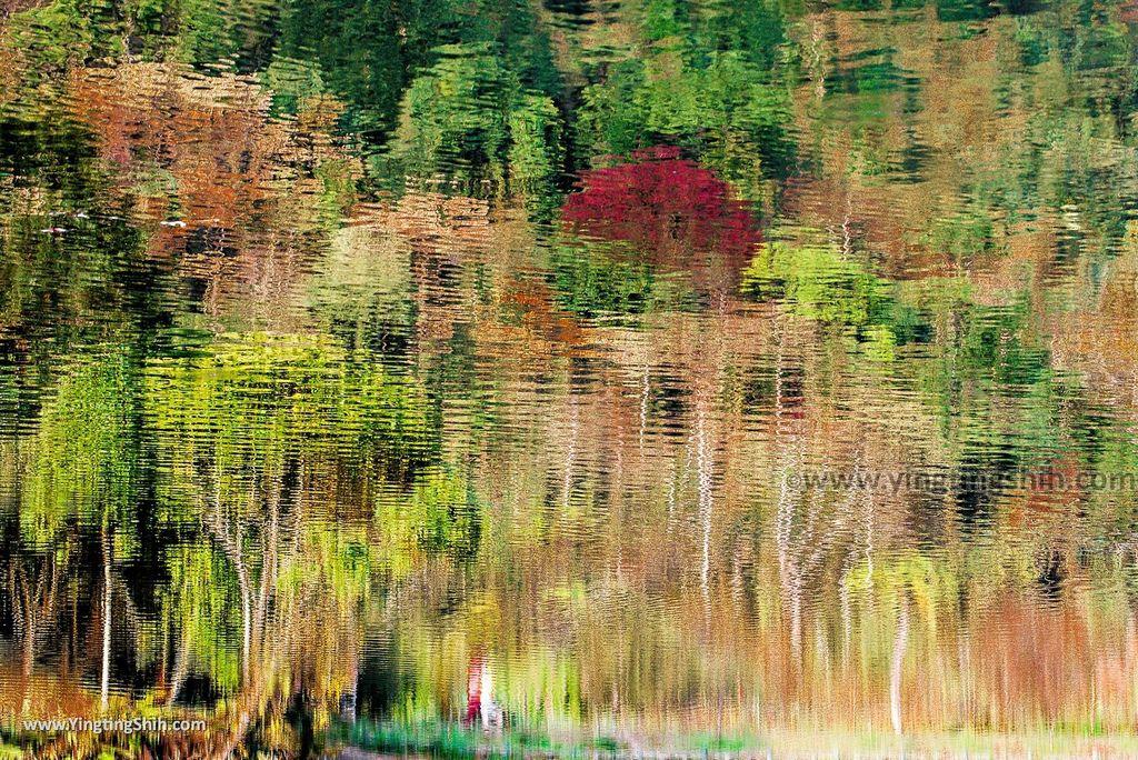 M_M_20180617_苗栗南庄向天湖/矮靈祭祭場/賽夏文物館/環湖步道079_20141129_向天湖_3A5A6984.jpg