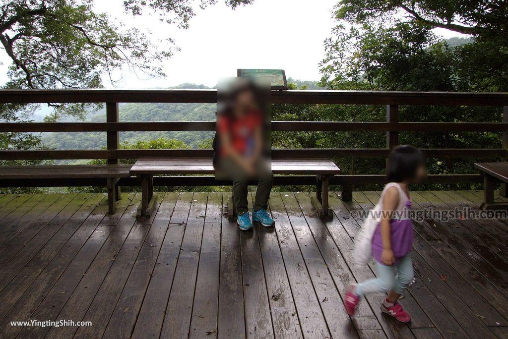 M_M_20180618_新竹關西馬武督探索森林/虹橋、馬武督瀑布/元氣、楊梅、竹林、楓林步道168_3A5A3008.jpg