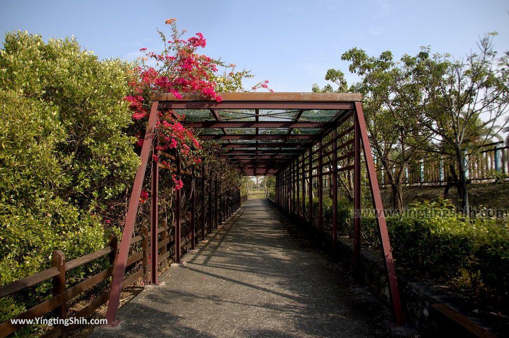 M_M_20180209_屏東東港右岸濕地公園033_3A5A1738.jpg