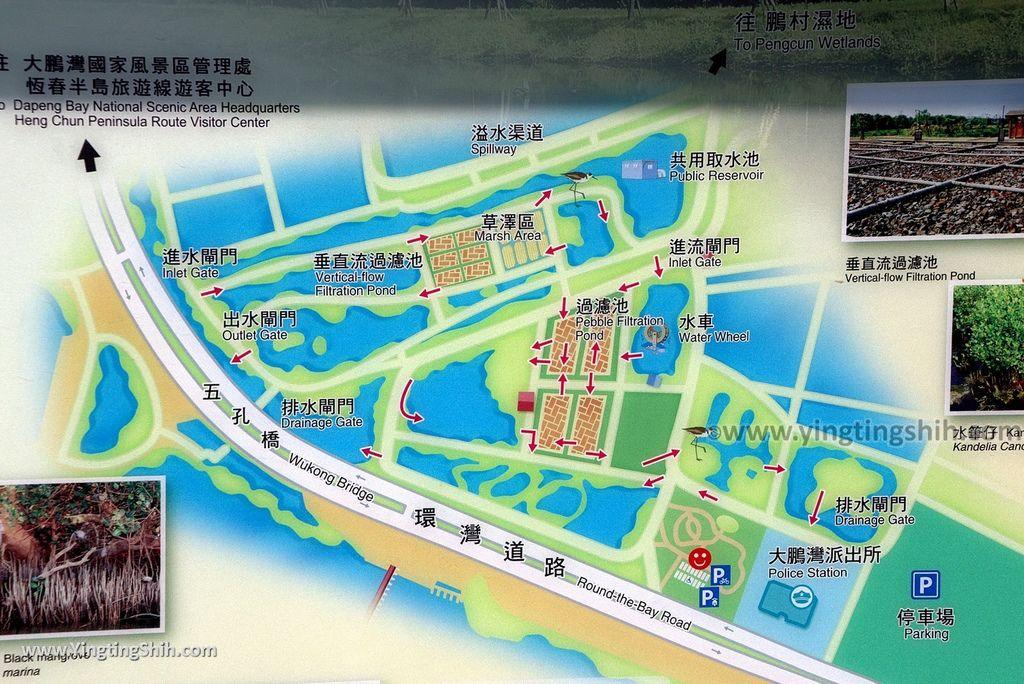 M_M_20180209_屏東東港右岸濕地公園042_3A5A1765.jpg