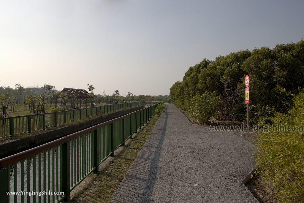M_M_20180209_屏東東港右岸濕地公園052_3A5A1798.jpg