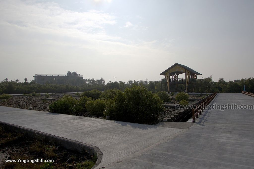 M_M_20180209_屏東東港右岸濕地公園060_3A5A1841.jpg