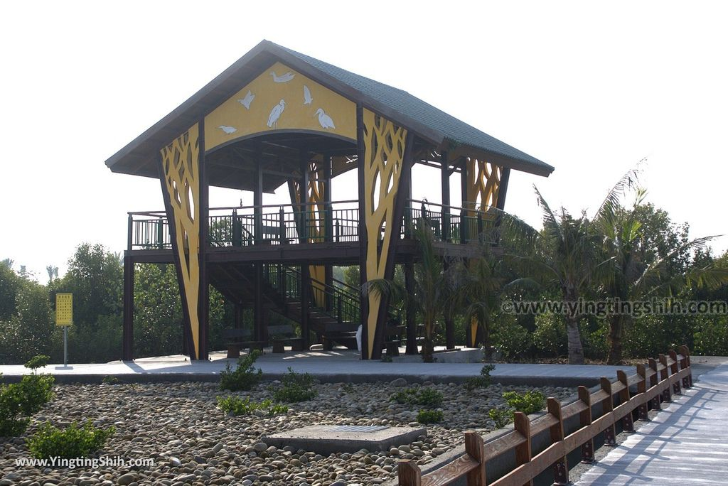 M_M_20180209_屏東東港右岸濕地公園062_3A5A1858.jpg