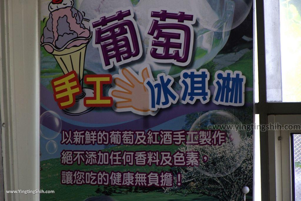 M_M_20170809_彰化埔心路葡萄隧道/巨峰老樹/休閒農場/葡萄酒莊027_3A5A0664.jpg