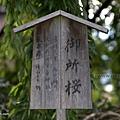 YTS_YTS_20180713_Japan Kyoto Kamigamo-jinja 日本京都上賀茂神社(賀茂別雷神社)/世界文化遺產/舞殿/陰陽石015_3A5A5956.jpg