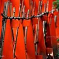 YTS_YTS_20180713_Japan Kyoto Kamigamo-jinja 日本京都上賀茂神社(賀茂別雷神社)/世界文化遺產/舞殿/陰陽石046_3A5A6065.jpg