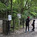 YTS_YTS_20180713_Japan Kyoto Kamigamo-jinja 日本京都上賀茂神社(賀茂別雷神社)/世界文化遺產/舞殿/陰陽石048_3A5A6146.jpg