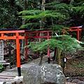 YTS_YTS_20180713_Japan Kyoto Kamigamo-jinja 日本京都上賀茂神社(賀茂別雷神社)/世界文化遺產/舞殿/陰陽石052_3A5A6186.jpg