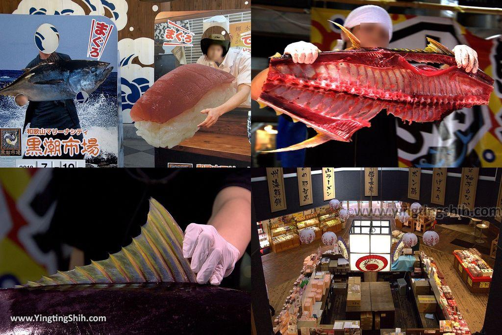YTS_合成圖_YTS_20180719_Japan Wakayama Kuroshio Market日本和歌山黒潮市場/金槍魚解體秀009_3A5A3626.jpg