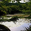 YTS_YTS_20180713_Japan Kyoto Ryoan-ji日本京都龍安寺/世界文化遺產/枯山水石庭024_3A5A9273.jpg